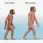 Les Fondamentaux Structuraux- Comment retrouver la posture idéale
