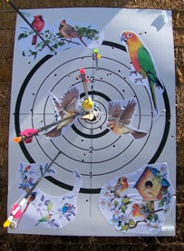 Abat l'oiseau 2013