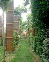 Beursault Chemin d'arc